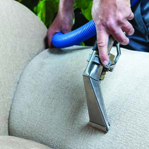 Professional Upholstery Cleaning in Moncton, dieppe and region
